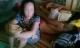 Bố vợ chém chết con rể: Ông ấy đã từng quỳ lạy Việt tha cho gia đình