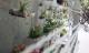 Nam sinh báo chí biến bãi rác thành vườn hoa đẹp ngỡ ngàng