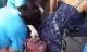 Nghẹn ngào khoảnh khắc bà mẹ sinh con rơi ngay trước cổng bệnh viện