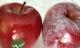 Mẹo hay phát hiện táo chứa chất độc bằng nước nóng