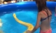 Bé gái bạo gan bơi cùng trăn khổng lồ