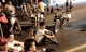 Hơn 500 học viên cai nghiện tại Đồng Nai trốn trại, tràn ra quốc lộ đập phá lúc nửa đêm