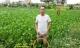 Hưng Yên: Gia đình nạn nhân chết dưới ruộng bèo mòn mỏi chờ công lý