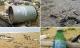 Tin nóng tối 12/2: Dầu vón cục, rác in chữ Trung Quốc tấp vào 7km bờ biển