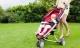Những điều cần biết không thừa khi dùng xe đẩy để đảm bảo an toàn cho bé