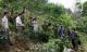 Hà Giang: Cảnh sát bắt khẩn cấp nghi can trói một phụ nữ vào gốc cây rồi sát hại