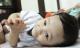 Hình ảnh mới nhất của bé trai 14 tháng tuổi bị bạo hành, bỏ rơi ở bệnh viện sau 5 ngày về nhà