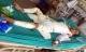 Cháy xưởng bánh kẹo 8 người tử vong: Hai thiếu niên đã tỉnh lại