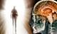 Nghiên cứu chấn động: Người đã chết vẫn có thể nghe được người xung quanh nói gì