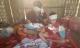 Cặp song sinh vừa chào đời đã phải chịu tang mẹ