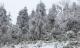 Miền Bắc bước vào đợt rét kỷ lục từ đầu đông, có nơi dưới 6 độ C