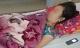 Công bố mức phạt nữ hộ sinh đưa nhầm thuốc phá thai cho bà bầu đi dưỡng thai