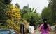 Gia đình nghi phạm giết 5 người ở TP.HCM sợ bị trả thù
