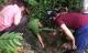 Tin đồn 3 tấn vàng trong hang đá ở Lạng Sơn gây mất trật tự trị an