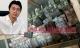 70 tỷ đồng gửi ở Singapore và kế hoạch ra đầu thú của ông trùm Phan Sào Nam