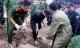 Dùng tay bới đất đá tìm nạn nhân bị vùi sau trận lở núi ở Nha Trang