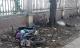 Hà Nội: Phát hiện người đàn ông tử vong dưới gốc cây ven đường