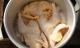 Luộc gà cho nước là xưa: Nấu theo cách này đảm bảo thơm ngon, ngọt thịt, đúng hàng cực phẩm