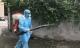 Bình Định ghi nhận hơn 5.000 ca mắc sốt xuất huyết, nhiều địa phương tăng đột biến