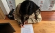 Cô gái 29 tuổi lập di chúc để lại 100 triệu đồng tiền tiết kiệm cho mối tình đầu dù đã chia tay