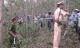 Bắt được hung thủ sát hại nữ sinh viên Trường ĐH Giao thông Vận tải TP HCM