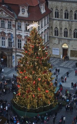Chiêm ngưỡng những cây thông Noel ấn tượng nhất thế giới năm 2014